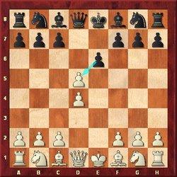 Französische Verteidigung, Schach Eröffnung